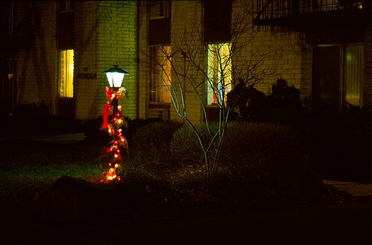 Holiday Lights, 2012