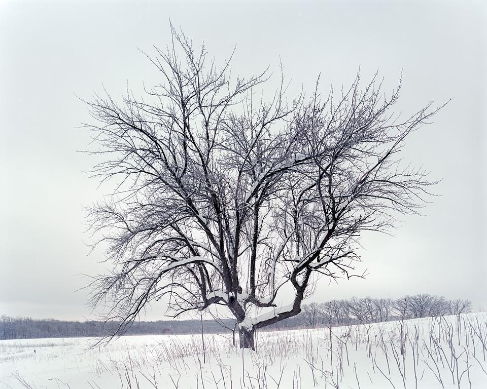 Solitude I-03